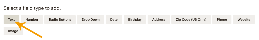 Audience Field Type in Mailchimp